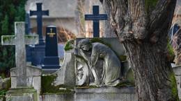 Wer besiegt den Tod?