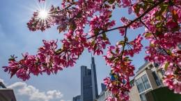 Sonne-Wolken-Mix in Hessen erwartet