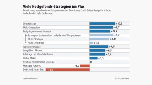 Infografik / Viele Hedgefonds-Strategien im Plus