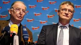 Meuthen und Gauland als Doppelspitze der AfD