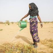 """Pflanzen heißt Hoffnung haben. Ein Mädchen wässert einen Gemeinschaftsgarten für Mitarbeiter der """"Great Green Wall"""" in Mbar Toubab, Senegal."""