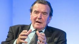 Schröder hält Neuwahl im Jahr 2019 für möglich