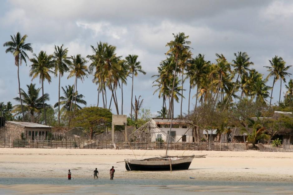 bilderstrecke zu deutsche farmer in mo ambique ein leben unter palmen bild 1 von 10 faz. Black Bedroom Furniture Sets. Home Design Ideas