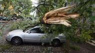Schwere Schäden nach Stürmen
