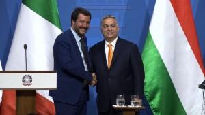 Orban und Salvini wollen Anti-Einwanderungs-Bündnis