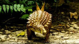 Wissenschaftler entdecken neue Dinosaurier-Art