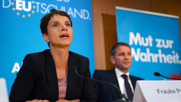 Petry kritisiert Höcke in Rundschreiben an AfD-Mitglieder