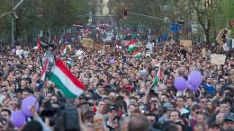 Zehntausende fordern Reform des Wahlgesetzes in Ungarn
