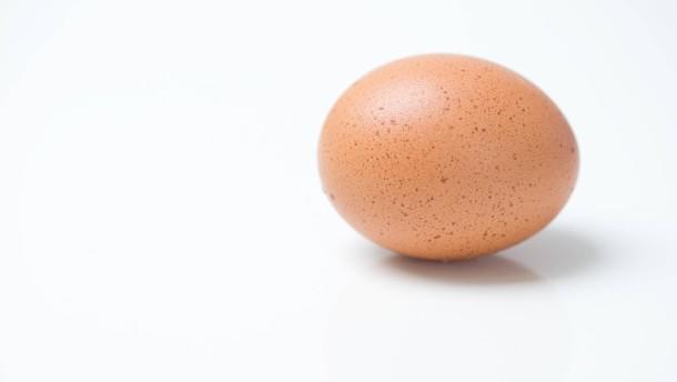 Der Lidl und das Ei