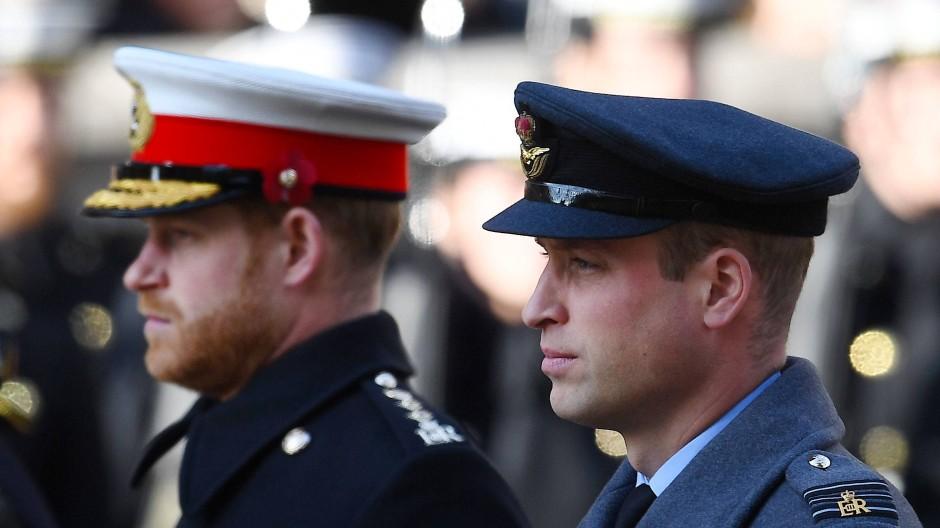 Verraten diese Minen was? Prinz Harry und Prinz William bei der Kranzniederlegung am Remembrance-Sonntag