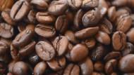Regen ist eine gute Nachricht für Kaffeetrinker