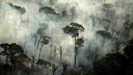 Kein Ende des Amazonas-Dramas in Sicht