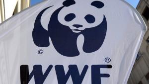 Reaktion auf Gewalt in Schutzgebieten von Naturschutzorganisationen
