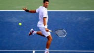 Verletzter Djokovic - Siegreicher Kamke - Erfolgreiche Eisbären