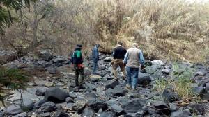 Mehr als 50 Leichen in Massengräbern in Mexiko entdeckt