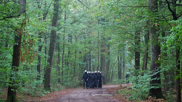 Hambacher Forst – Polizei bestreitet Entdeckung von Tunnelsystemen
