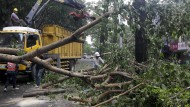 """Umgestürzte Bäume, Erdrutsche, es gibt Tote und Verletze - Taifun """"Dujuan"""" richtet auf Taiwan schwere Verwüstungen an."""