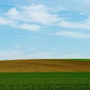 Brandenburg: grüne Äcker, darüber leichte Wolkenbildung