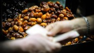 Ein Deal in Teheran: Auf einem iranischen Markt sind sich zwei Händler einig geworden.