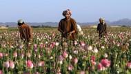 Niederlage in Afghanistan: Das Opium des Volks