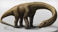 Dinosaurier schwerer als ein Flugzeug