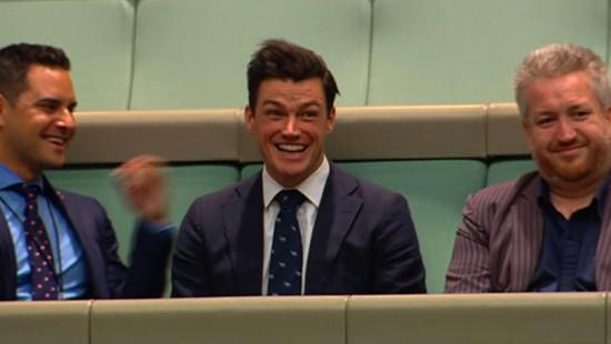 Heiratsantrag im australischen Parlament