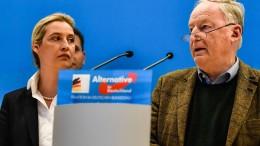 """Partei macht """"gesellschaftliches Klima"""" verantwortlich"""