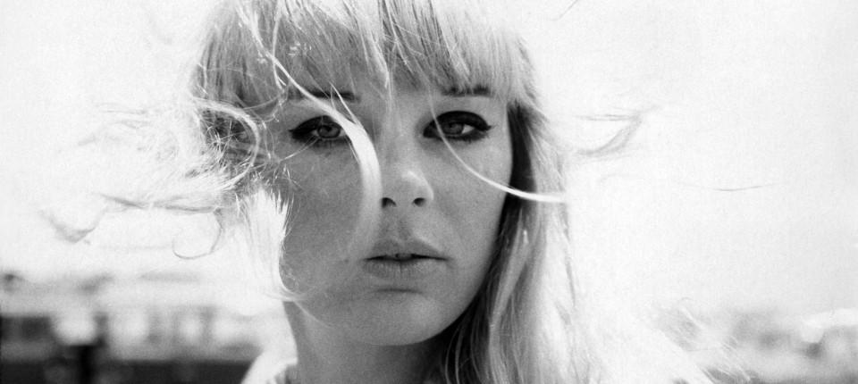 Elke Sommer, 1964