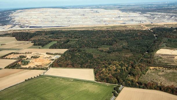 RWE wird Hambacher Forst nicht einzäunen