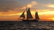 """Vom Schweizer Segelboot """"Fleur de Passion"""" aus untersuchen Umweltforscher die Weltmeere."""