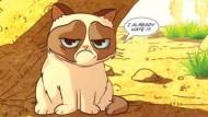 Grumpy Cat wird Comic-Star