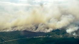 Heftige Waldbrände wüten in Schweden