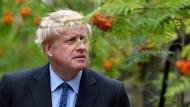 Wird er der nächste Tory-Vorsitzende? Boris Johnson bei einem Fototermin in einer Baumschule