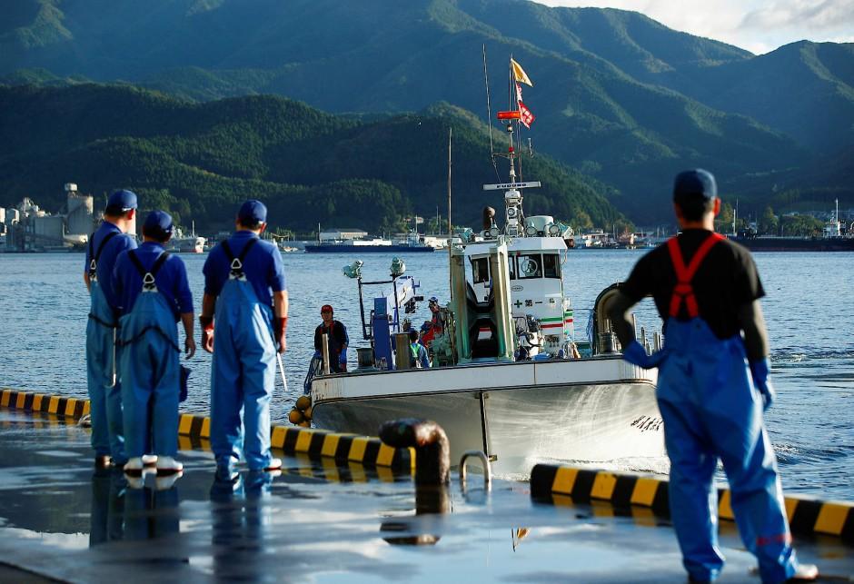 Ein Fischkutter kehrt mit seinem Fang in den frühen Morgenstunden in die Küstenstadt Ofunato zurück.