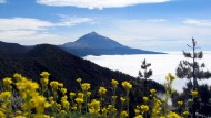 Gran Canaria: Kanarische Vielfalt