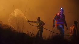 Tote bei Waldbränden