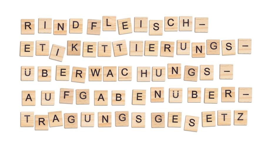 Unübertroffen: Das Rindfleischetikettierungsüberwachungsaufgabenübertragungsgesetz ist das längste zusammengesetzte Hauptwort deutscher Sprache.