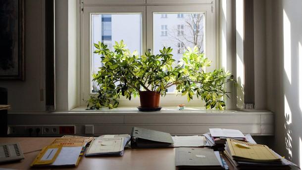Schöne grüne Bürowelt?