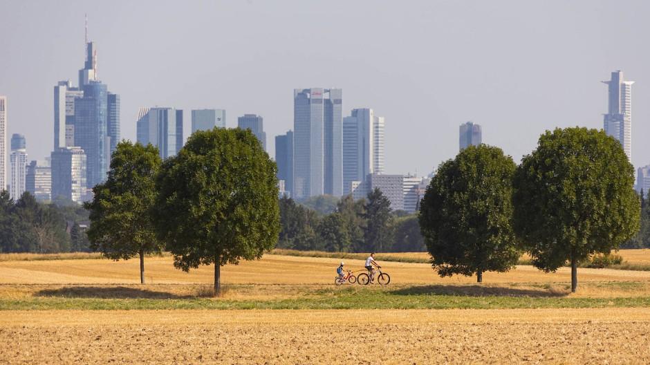 Frankfurt Ende Juli: Zu dieser Zeit war es besonders heiß.