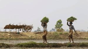 So hart trifft die Klimakatastrophe die Asien-Pazifik-Region