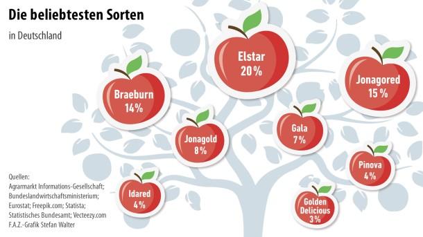 Infografik / Äpfel 7