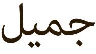 """""""Schön"""" ist die arabische Sprache allemal, ebenso wie die Schrift. Auf Hocharabisch heißt dieses Adjektiv """"dschamil"""". Doch in Ägypten wird der erste (also der am rechten Wortrand stehende) Buchstabe nicht """"dsch"""" sondern """"g"""" ausgesprochen, im Sudan eher als """"dj"""" und im Maghreb als stimmhaftes """"sch""""."""
