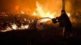 Riesige Waldbrände wüten in Portugal