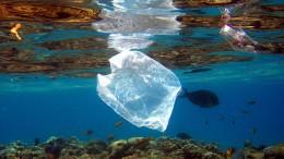 Mit einem Siegel gegen den Plastikmüll?