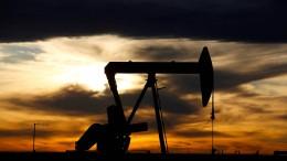 Opec-Länder wollen weniger Öl produzieren