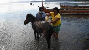 Philippiner drängen auf Rückkehr in ihre Häuser