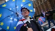 Ein Brite protestiert gegen den Brexit.