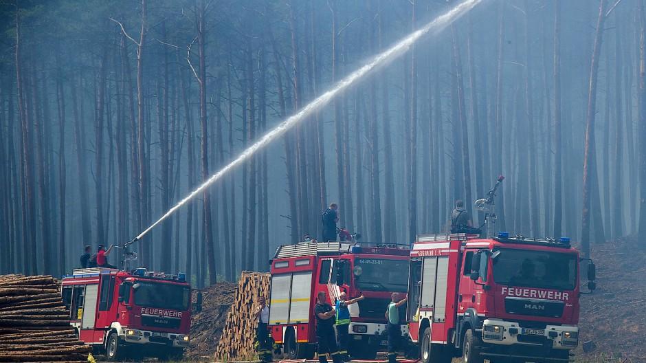 Waldbrand In Mecklenburg-Vorpommern