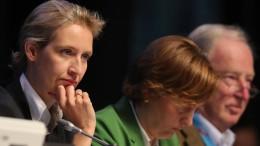 AfD-Bundesvorstand stellt sich hinter Weidel