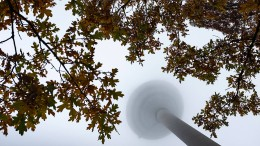 Herbst verhältnismäßig kühl und feucht